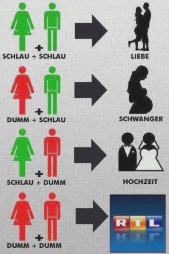 Schlau + Schlau = Liebe; Dumm + Schlau = Schwanger; Schlau + Dumm = Hochzeit; Dumm + Dumm = RTL
