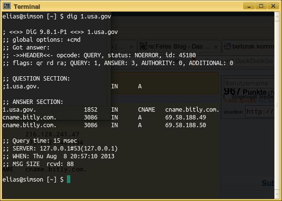 Bildschirmfoto meines terminalemulators, in dem das Ergebnis eines dig 1.usa.gov sichtbar wird